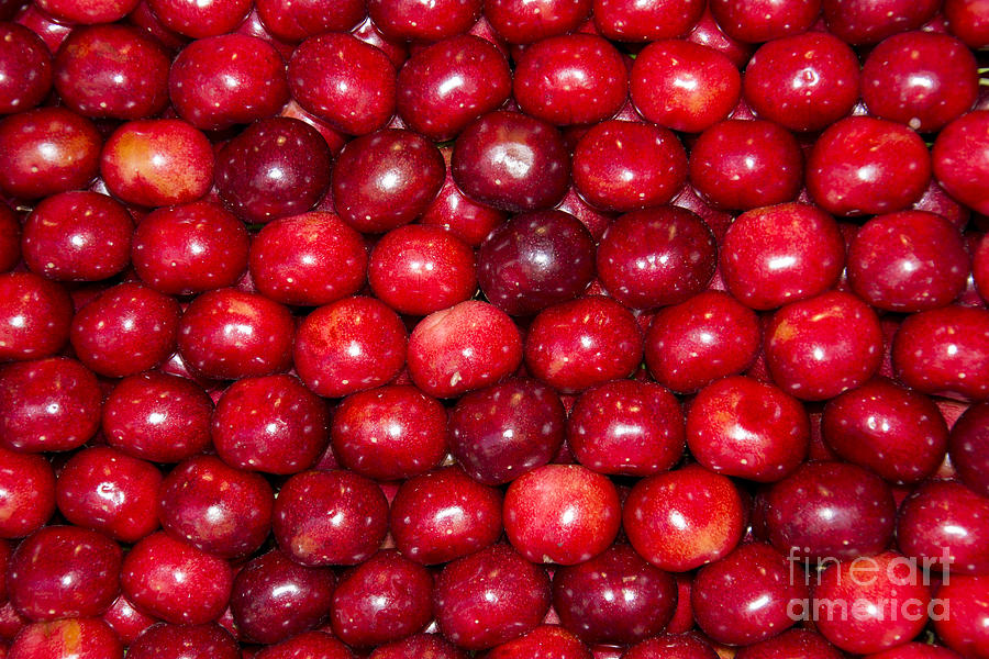Background Photograph - Cherries by Stefano Piccini