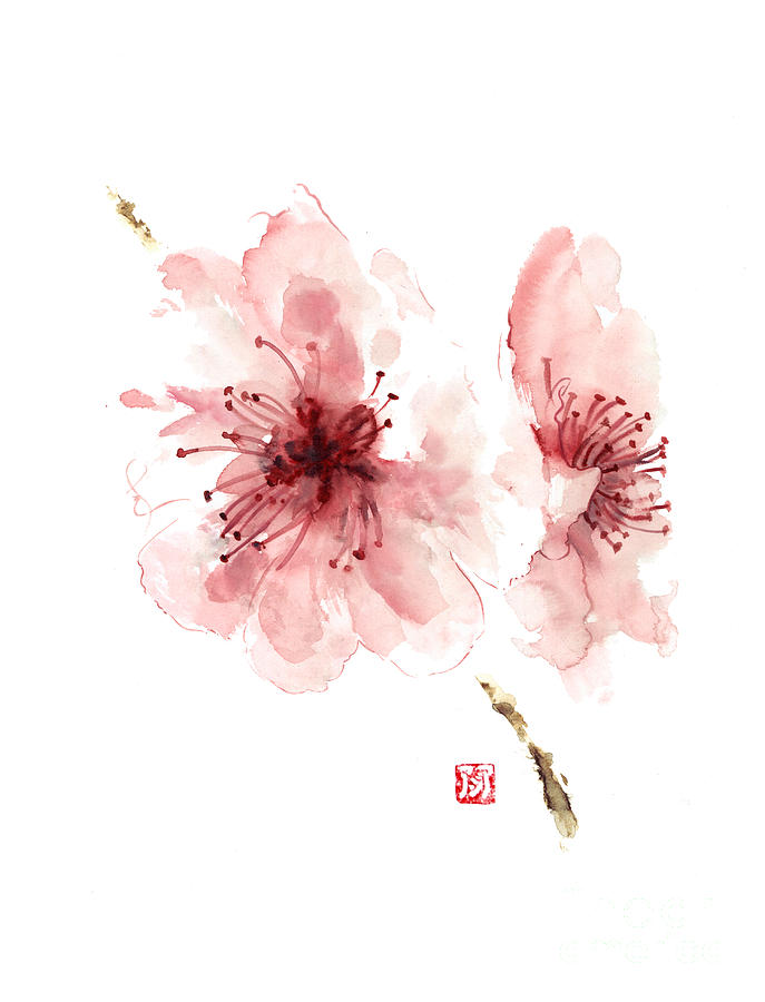 cherry blossom art print watercolor painting japanese flowers large