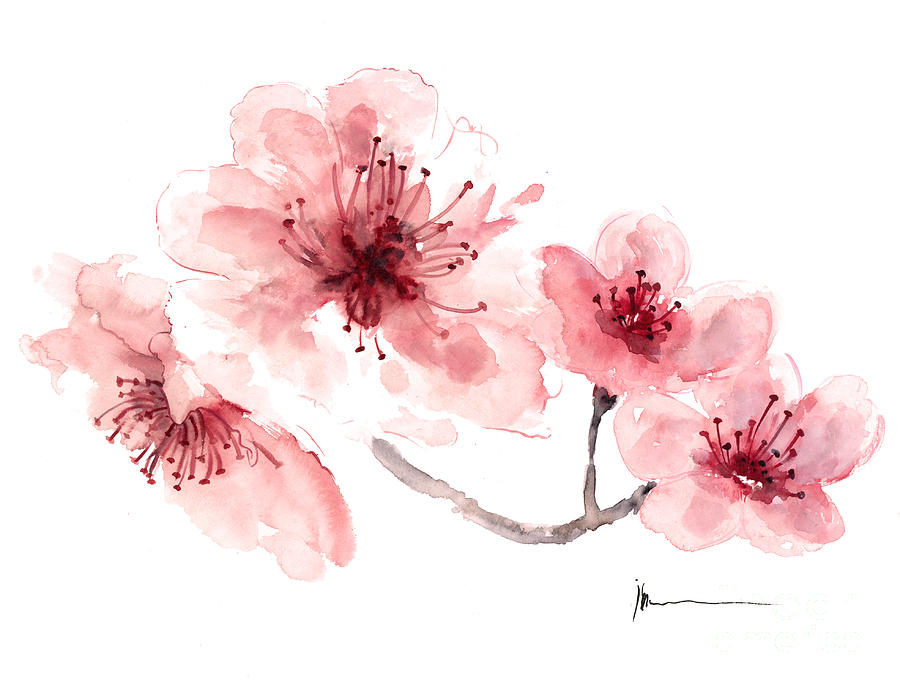 Cherry Blossom Fragrance Watercolor Art Print Painting Painting By Joanna Szmerdt