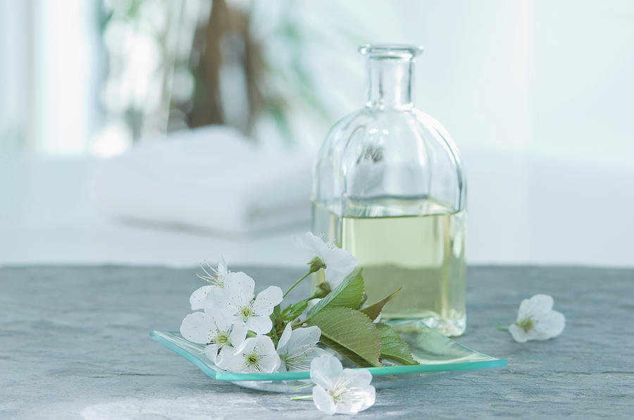Cherry Blossom With Aroma Oil, Close Up Photograph by Westend61