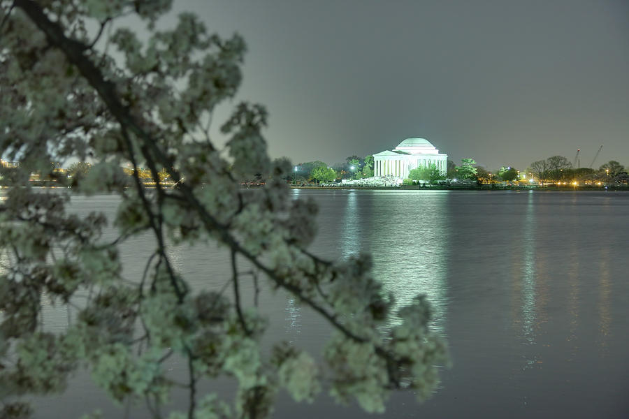 Architectural Photograph - Cherry Blossoms 2013 - 102 by Metro DC Photography
