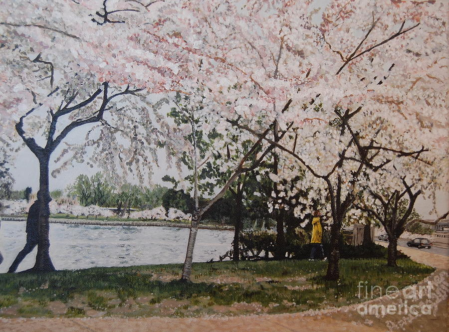 Cherry Blossoms Painting - Cherry Blossoms by Terry Stephen