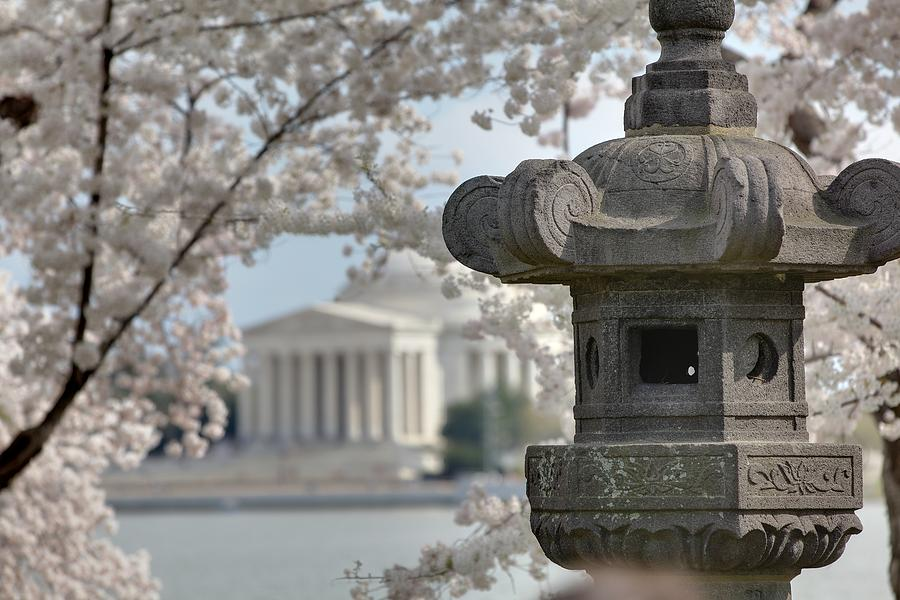 America Photograph - Cherry Blossoms With Jefferson Memorial - Washington Dc - 011323 by DC Photographer