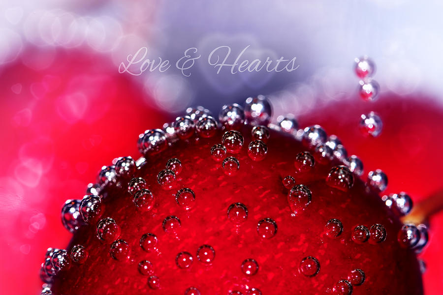 Cherry Photograph - Cherry Fizz Hearts With Love by Tracie Kaska