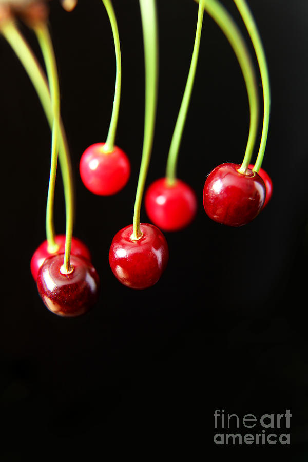 Cherry Fruits by Eden Baed