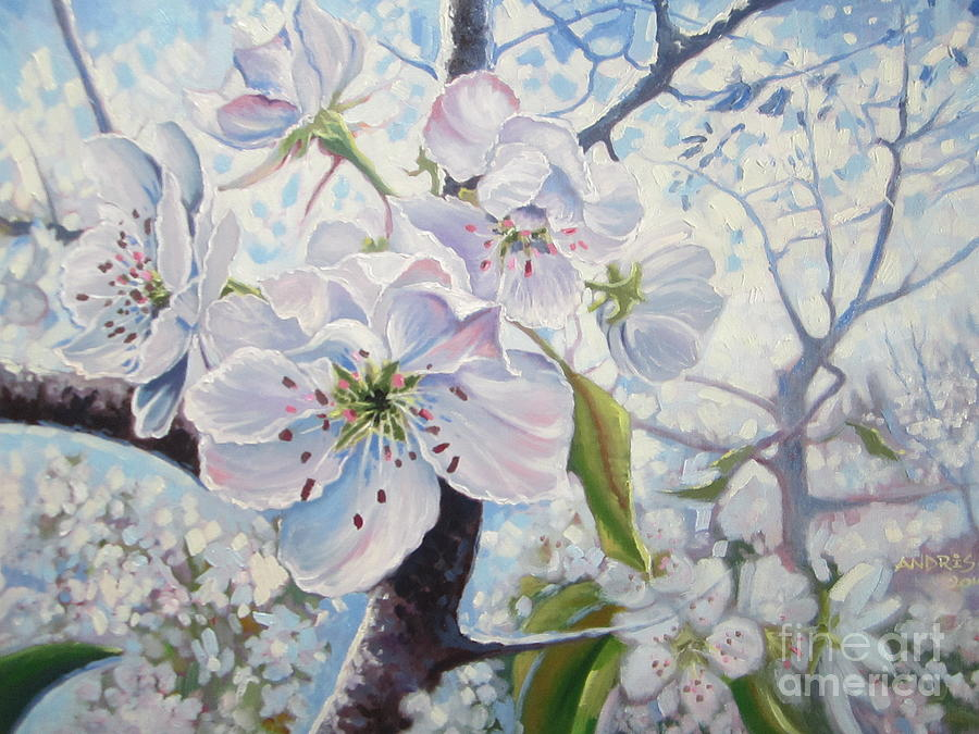 Cherry Painting - Cherry In Blossom by Andrei Attila Mezei