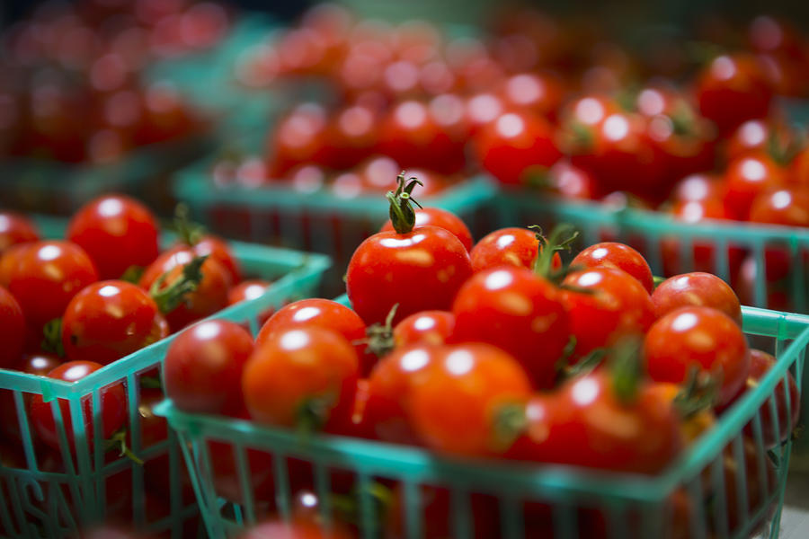 Tomatoes Photograph - Cherry Tomatoes by Caitlyn  Grasso