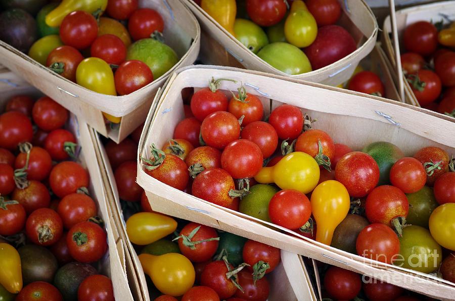 Abundance Photograph - Cherry Tomatos by Carlos Caetano
