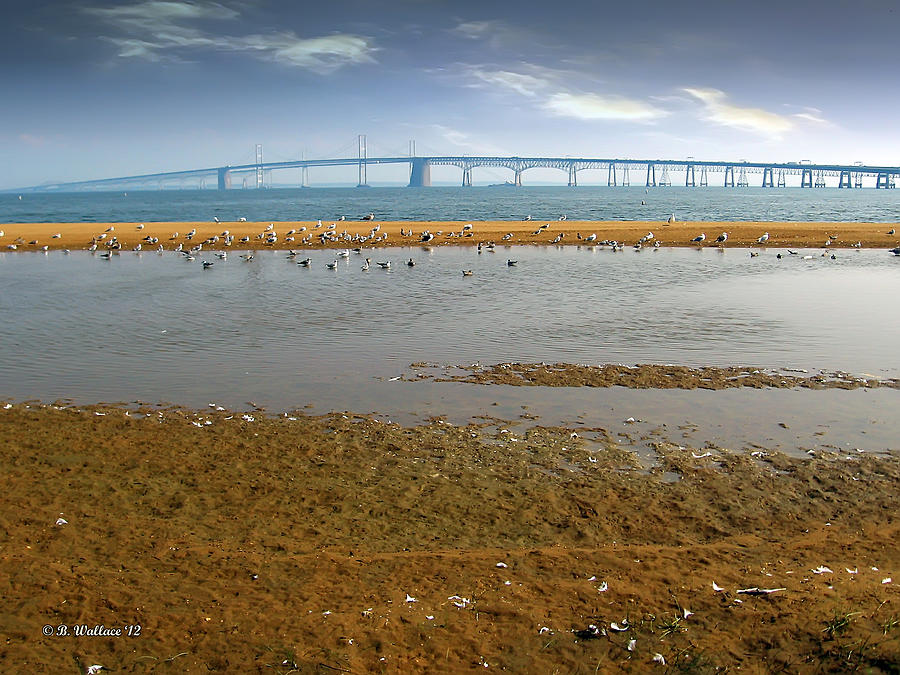 2d Photograph - Chesapeake Bay Bridge by Brian Wallace