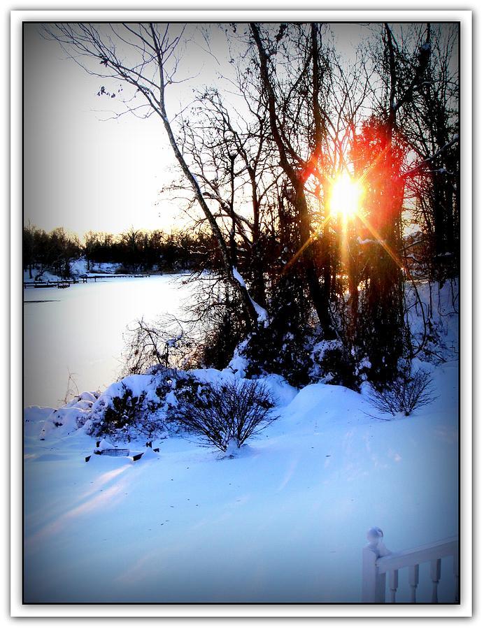 Danielle Parent Photograph - Chesapeake Bay  Winter Wonderland by Danielle  Parent
