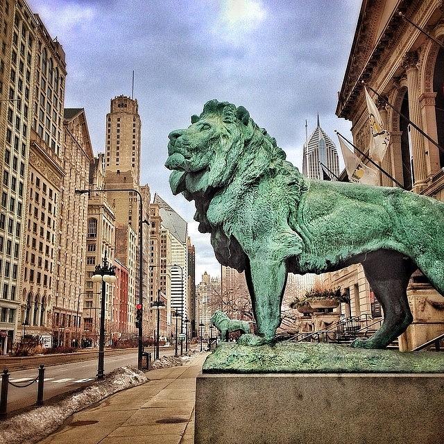 Lion Photograph - Chicago Art Institute Lion Statue by Paul Velgos