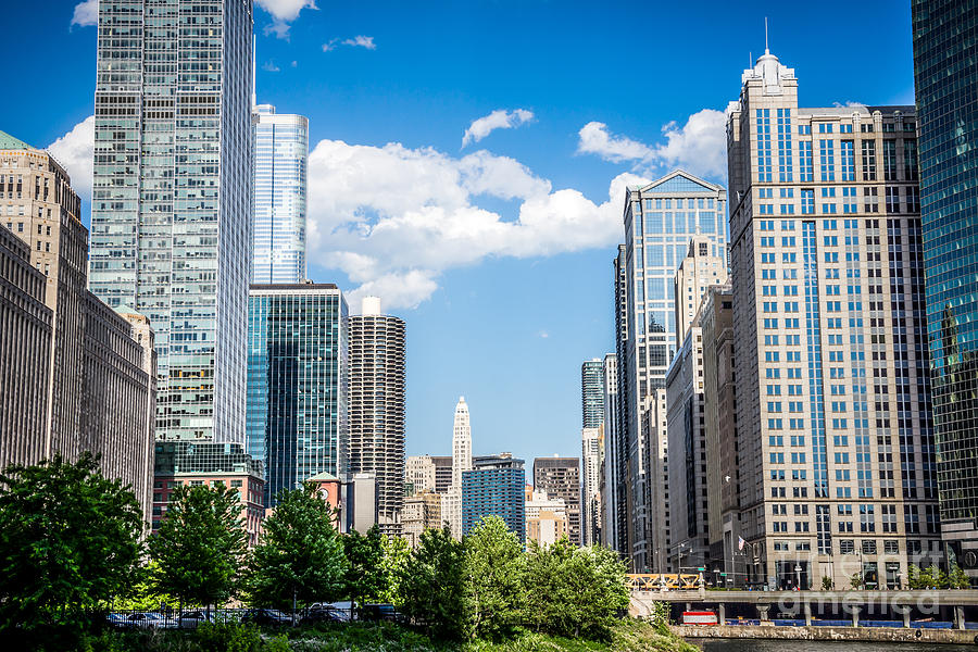 2012 Photograph - Chicago Cityscape Downtown Buildings by Paul Velgos