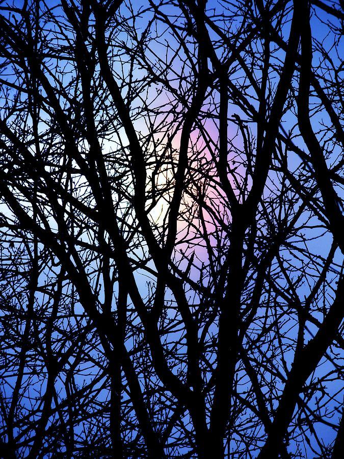 Blue Photograph - Chicago Winter Rainbow by Todd Sherlock