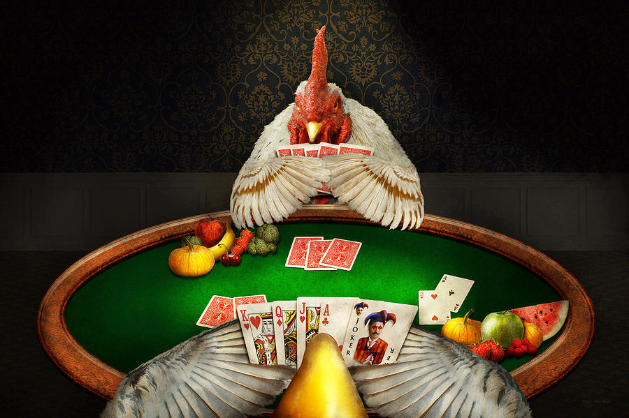 Image result for gambling for chickens