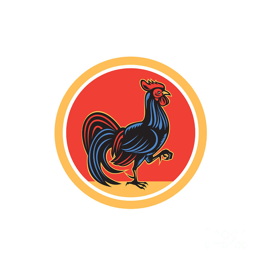 Rooster Digital Art - Chicken Rooster Marching Walking Circle Retro by Aloysius Patrimonio