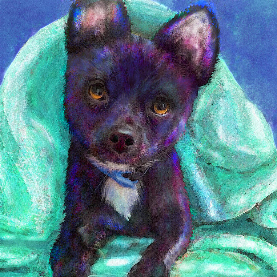 A Toy Chihuahua Dog Peeks Out From Under A Blanket. Digital Art - Chihuaua by Jane Schnetlage