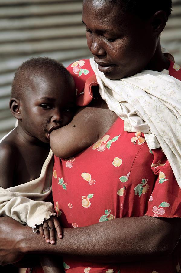 Human Photograph - Child Breastfeeding by Mauro Fermariello/science Photo Library