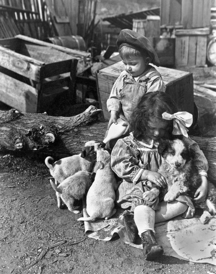 1910 Photograph - Children On Farm With Puppies by Underwood Archives