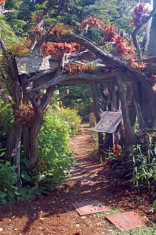 Brookgreen Gardens Photograph - Childrens Garden - Please Duck by Suzanne Gaff