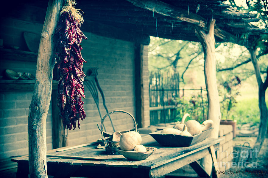 Tubac Photograph - Chiles De Tubac by Patty Descalzi