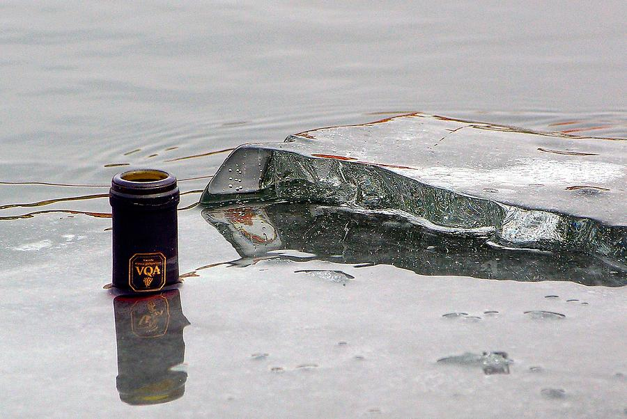 Ice Photograph - Chilled by Paul Wash