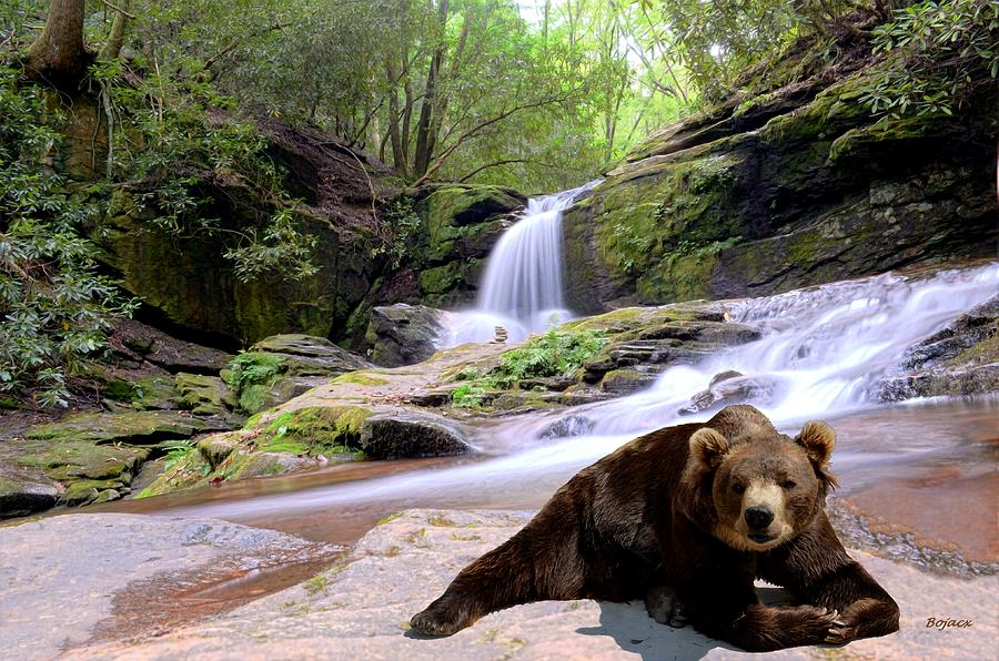 Scenic Digital Art - Chillin Bear by Bob Jackson