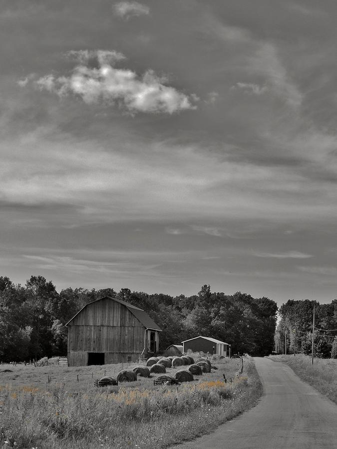 Barn Photograph - Chillin On A Dirt Road by Anthony Thomas