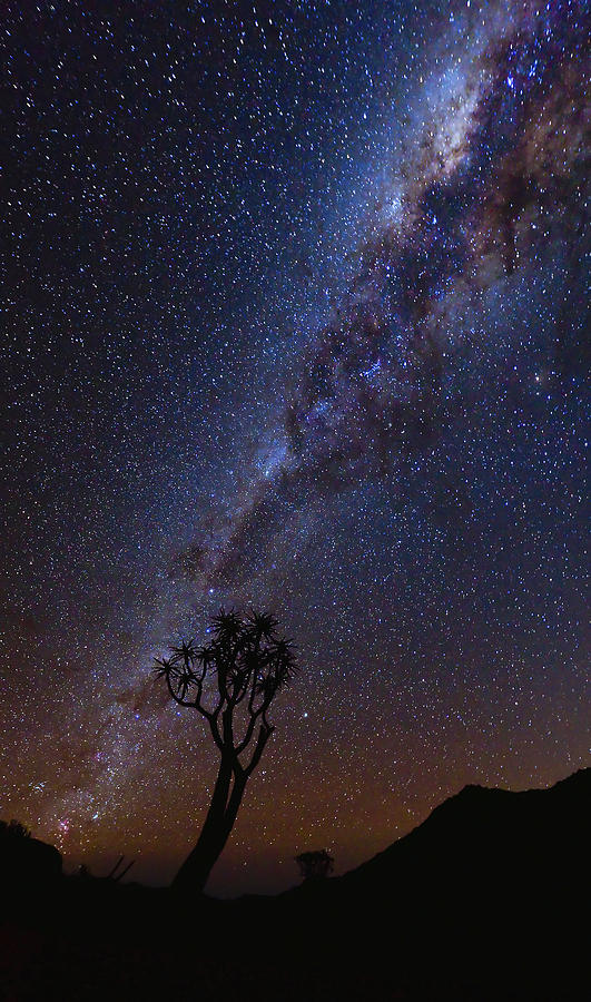 Milkyway Photograph - Chimney Of Light by Basie Van Zyl