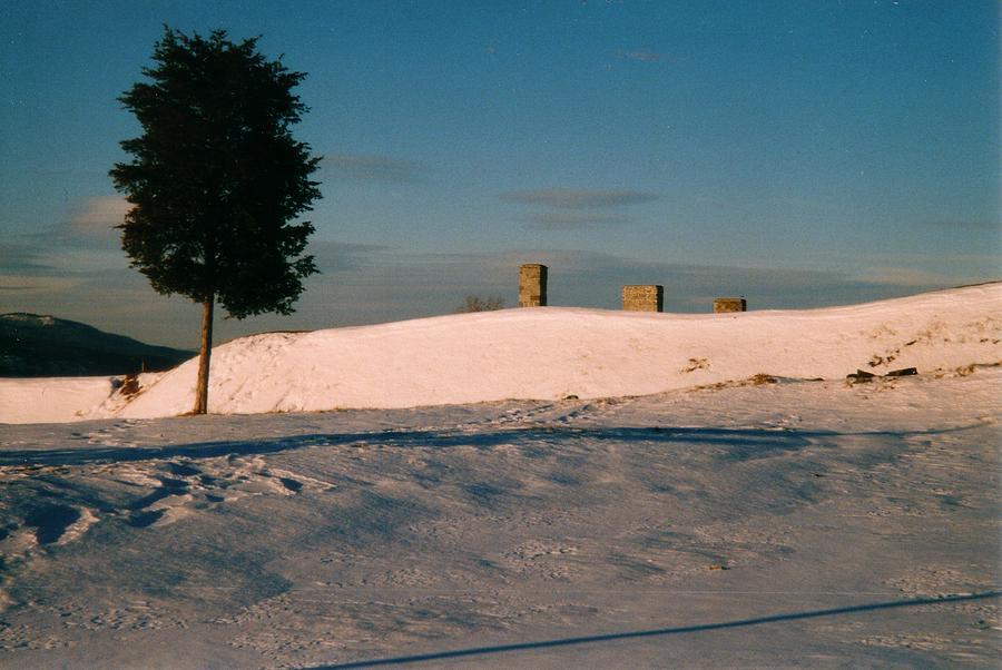 Winter Scene Photograph - Chimneys And Tree by David Fiske