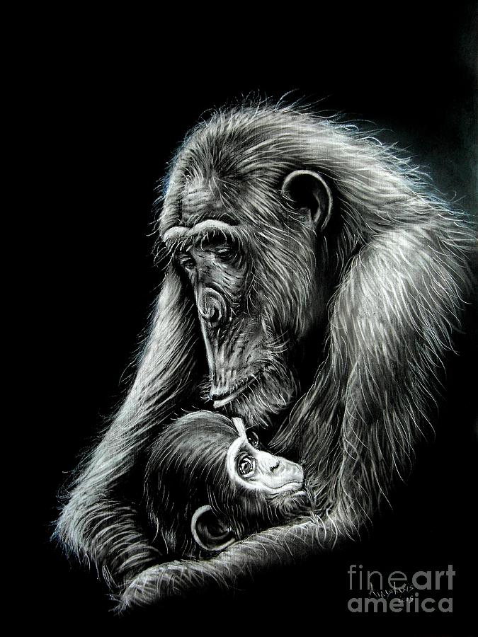 Chimpanzee Drawing - Chimp Love by Anastasis  Anastasi