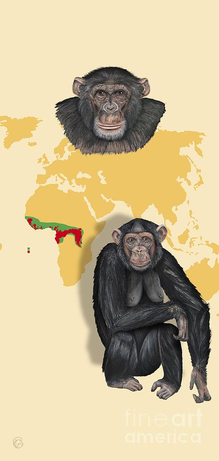 Chimpanzee Pan Troglodytes Shrinking Habitats - Zoo Interpretive Panels - Great Apes - Schautafeln Painting