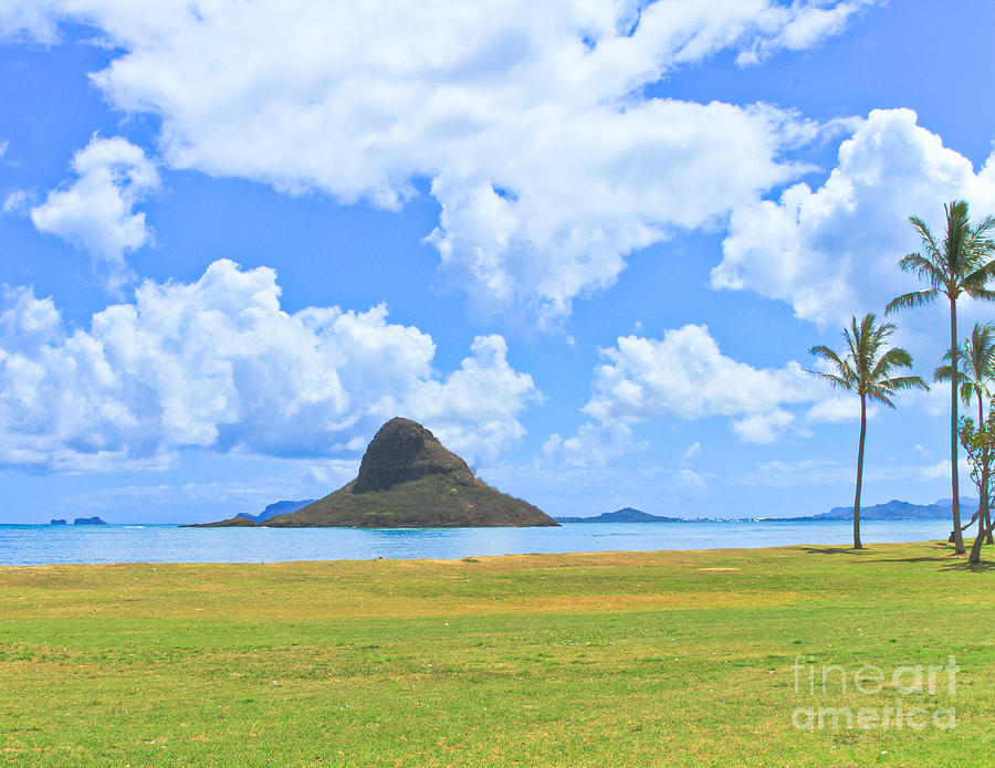 Hawaii Photograph - Chinamans Tat by Terry Cotton