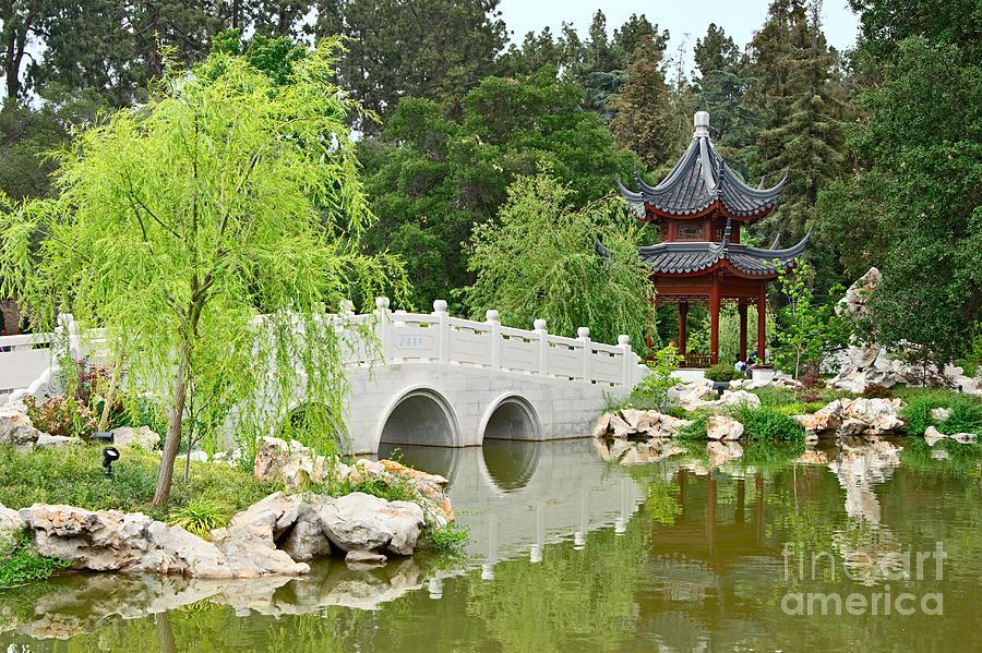 Chinese Garden Photograph   Chinese Garden With Stone Bridge And Pagoda By  Jamie Pham