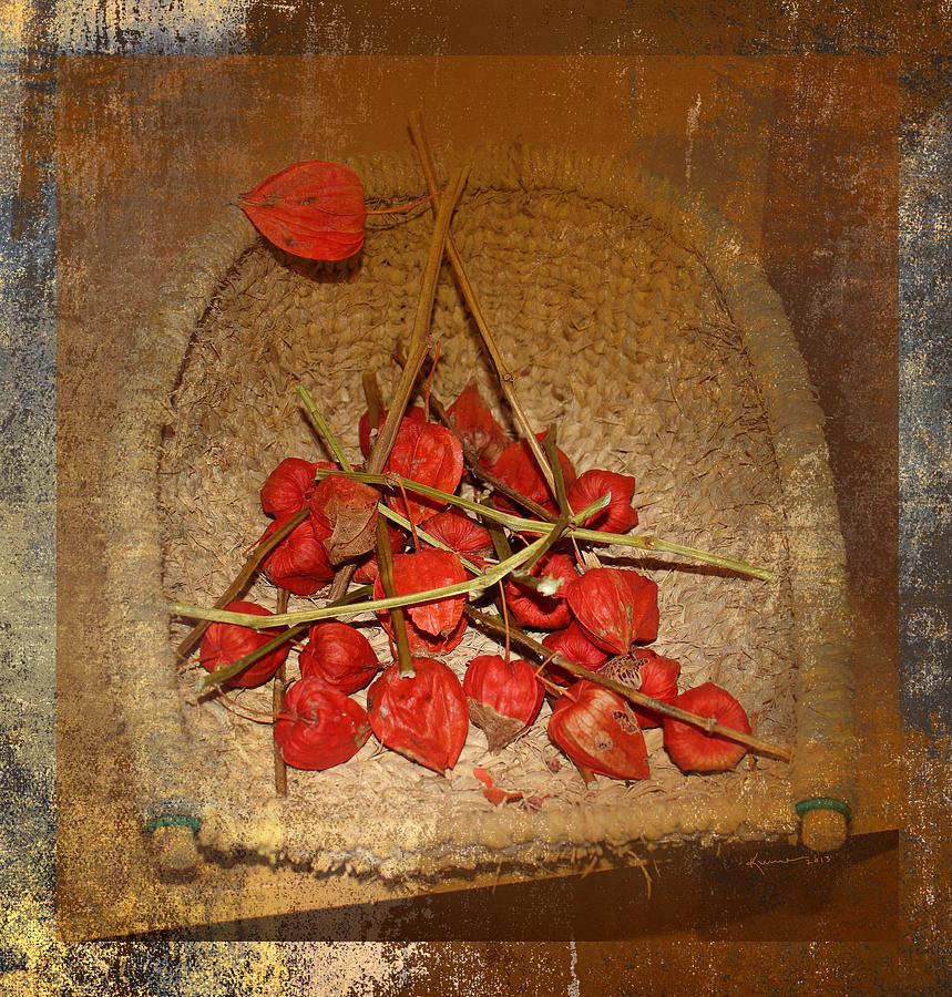 Ornamental Photograph - Chinese Lantern Seed Pods by Kume Bryant