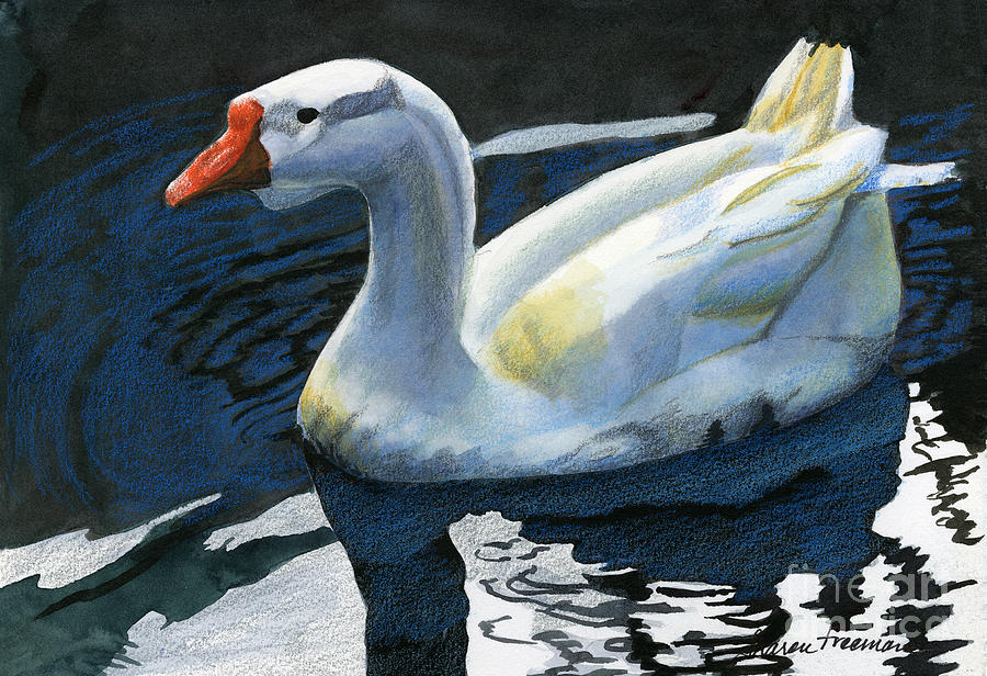 Duck Mixed Media - Chinese Waterfowl by Sharon Freeman