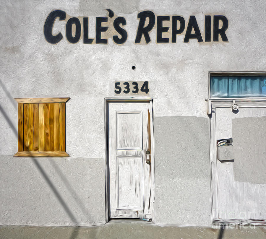 Old Painting - Chino - Coles Repair by Gregory Dyer