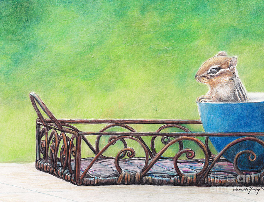 Animal Drawing - Chipmunk In Blue Bowl by Charlotte Yealey