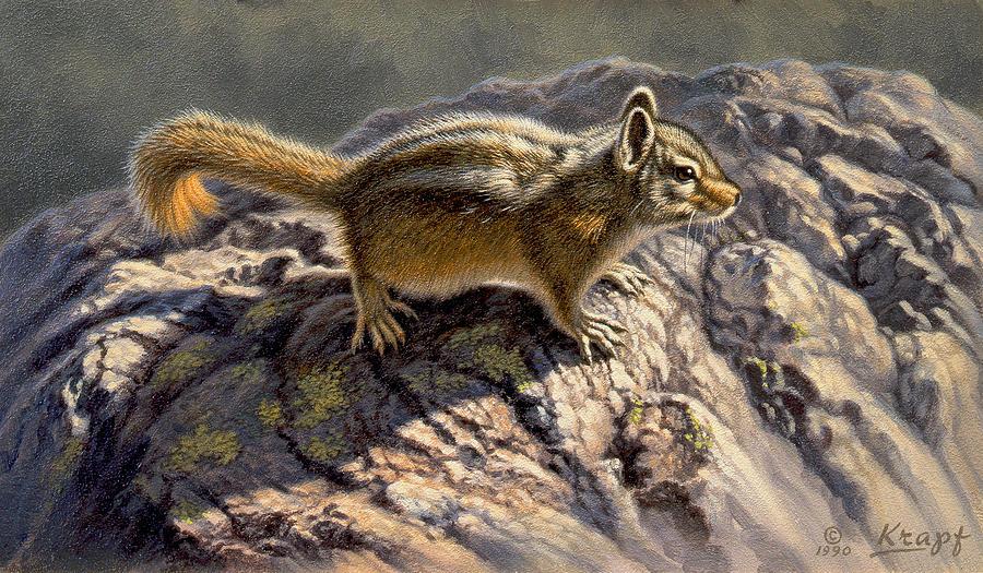 Wildlife Painting - Chippy On The Rocks by Paul Krapf