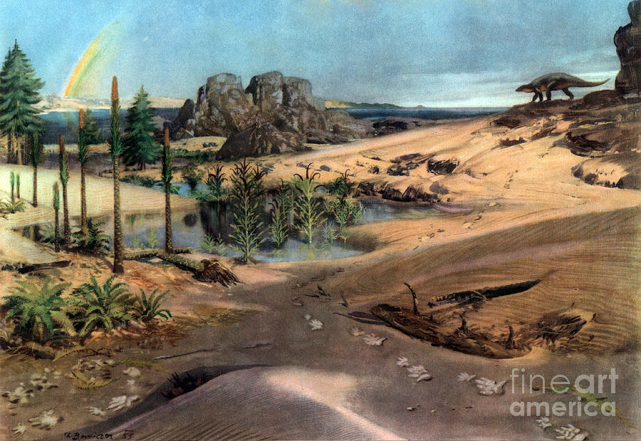 Flora Photograph - Chirotherium In Lower Triassic Landscape by Science Source