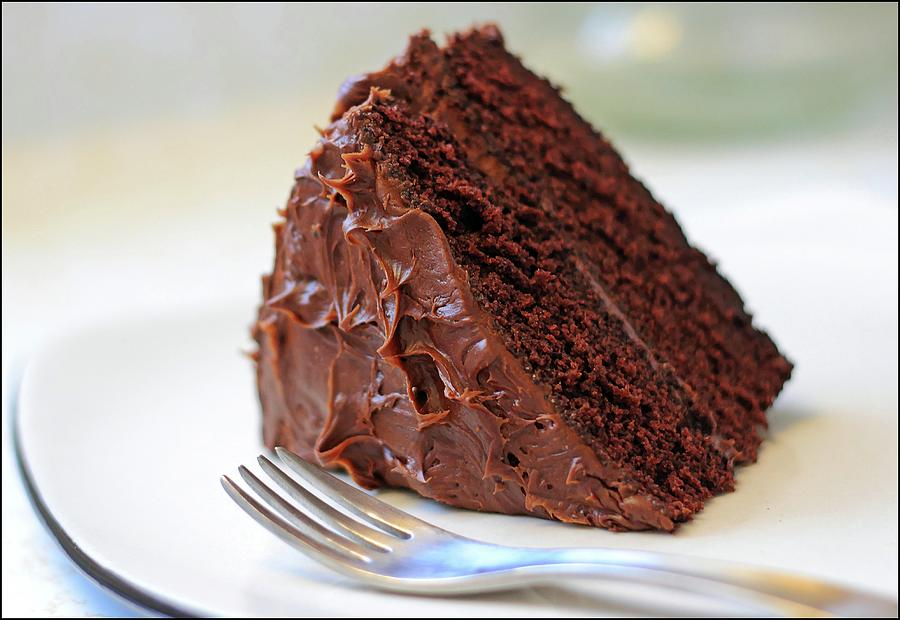 Chocolate Cake Photograph by Susan Thompson Photography
