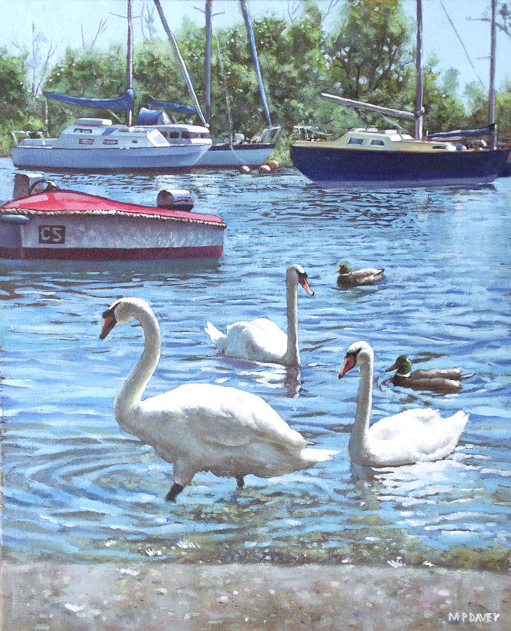 Christchurch Painting - Christchurch Harbour Swans And Boats by Martin Davey