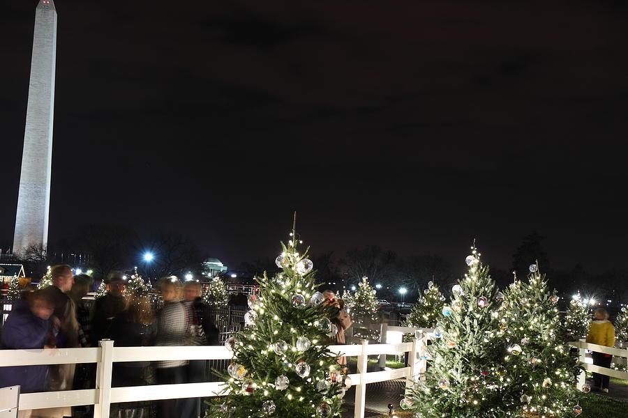 Washington Photograph - Christmas At The Ellipse - Washington Dc - 01135 by DC Photographer