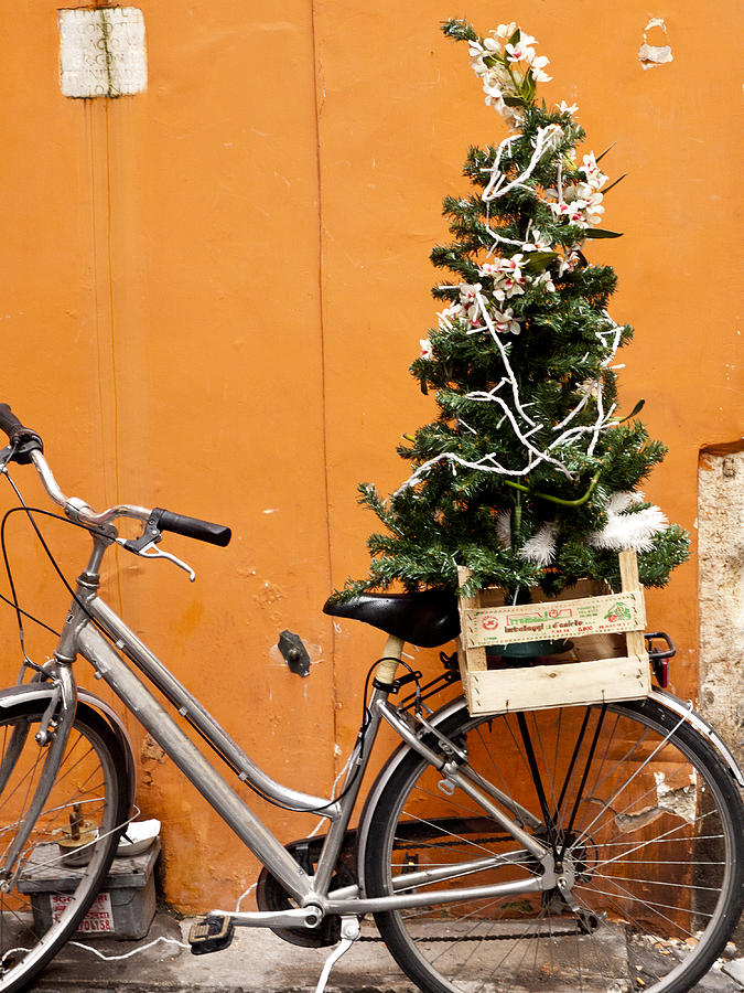 Bike Photograph - Christmas Bicycle by Rae Tucker