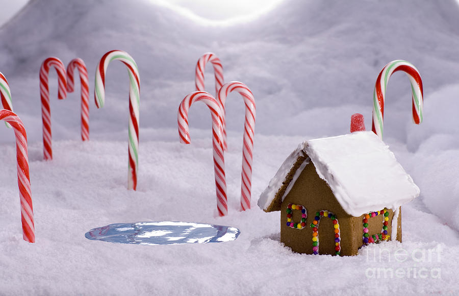 Christmas Candy Cane Forest Cottage Pond Photograph By Saje