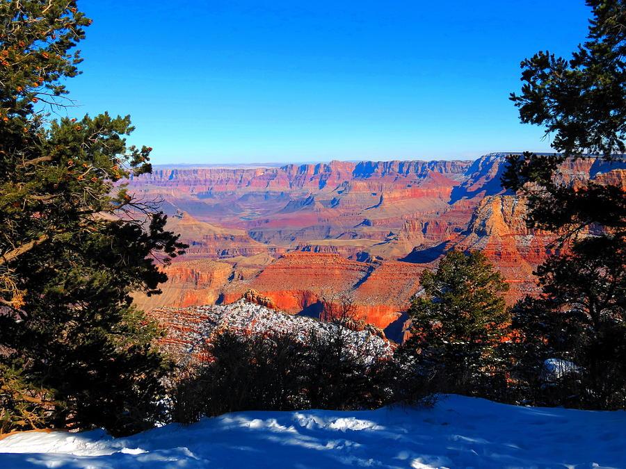 Christmas Canyon Photograph by Alex  Call