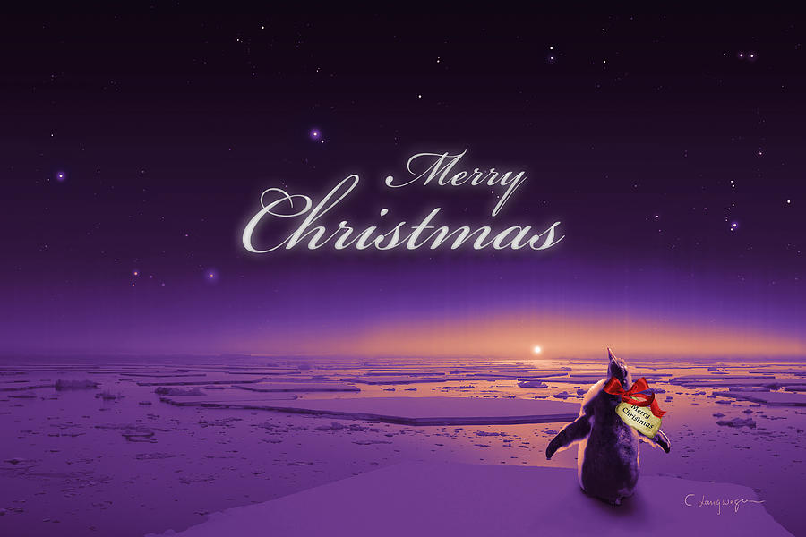 Christmas Card - Penguin purple by Cassiopeia Art