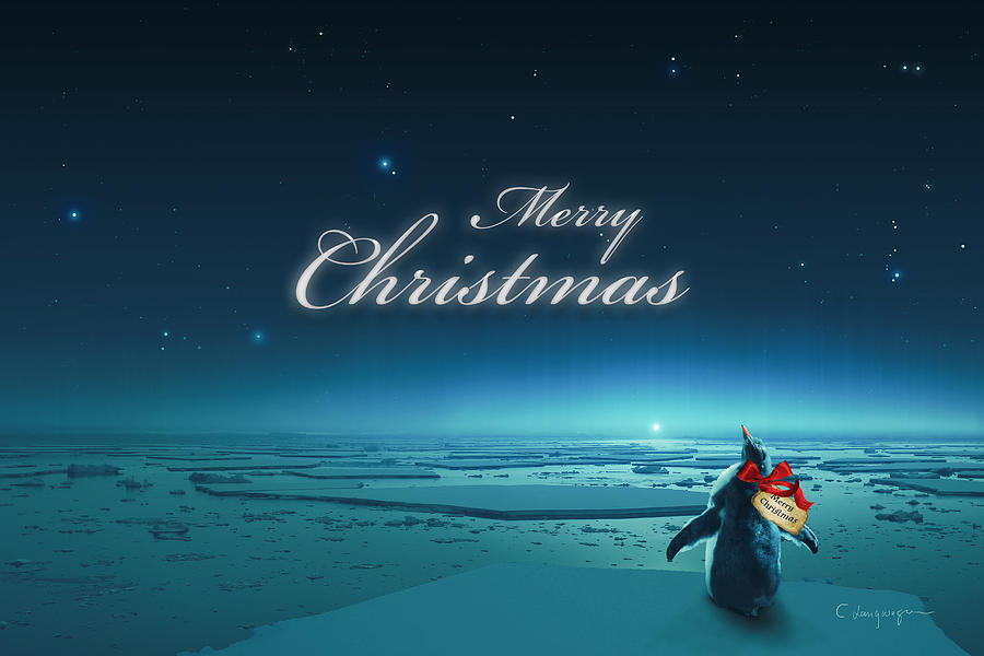 Christmas Card - Penguin turquoise by Cassiopeia Art