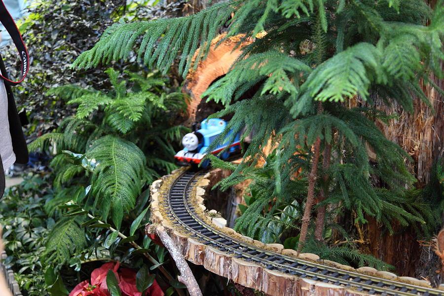 Washington Photograph   Christmas Display   Us Botanic Garden   011326 By DC  Photographer