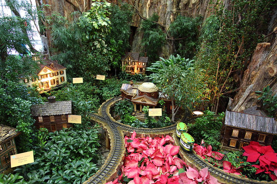 christmas display us botanic garden 011345 photograph by dc photographer