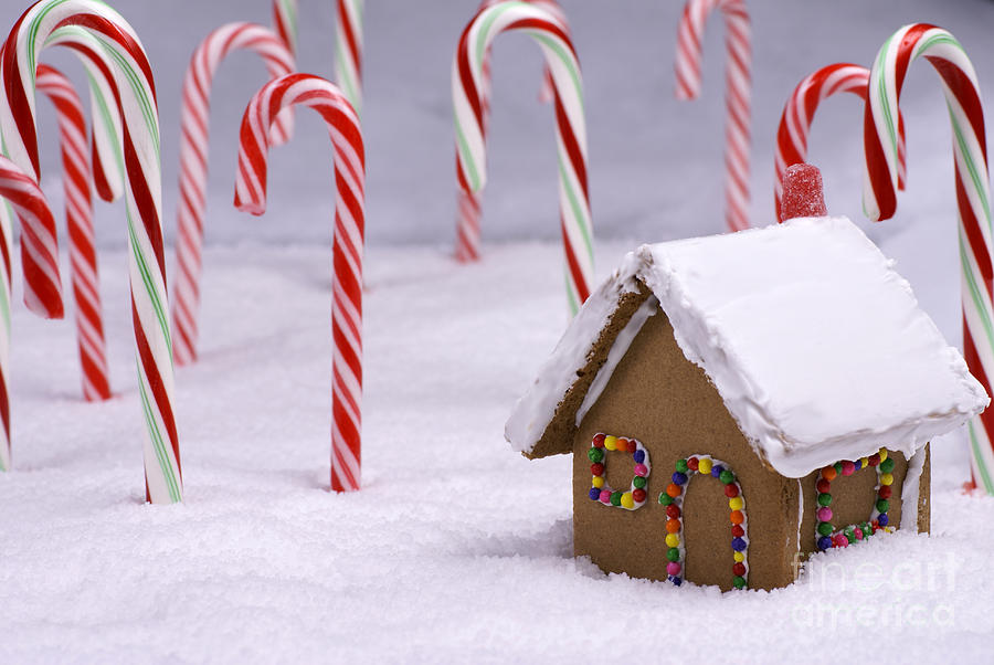 Christmas Ginger Bread Cottage In Candy Cane Forest Photograph By